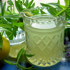 Old-Fashioned Lemon Verbena Lemonade Syrup