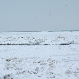 Presque Isle, Pennsylvania by Tina Marie - Landscapes Beaches ( water, sand, frozen lake, pennsylvania, lake, beach, frozen, winter scene, winter, nature, erie, snow, presque isle, lake erie )