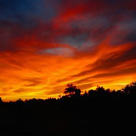 Heavenly Golden Sky by Pam Williams - Landscapes Cloud Formations ( golden blue sky, blue, golden sky, gold clouds, gold, gold and blue sky, heavenly gold, orange. color )