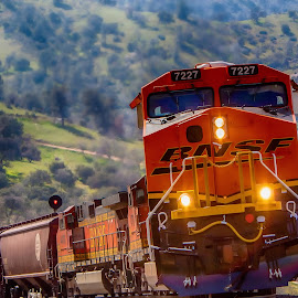 7227 by Kerry Perkins - Transportation Trains ( bnsf, locomotive, train fan, train, trains )
