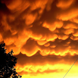 Look Out the Window...NOW! by Amy Clark - Landscapes Weather ( clouds, mammatus, sky on fire, weather, mindblowing )