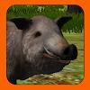 Boar Hunter 2014