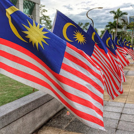 Flags by Rozi Rahman - Instagram & Mobile iPhone