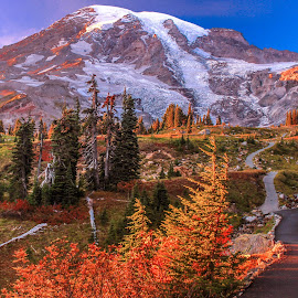 Mt Rainier Fall Sunset by Judi Kubes - Landscapes Mountains & Hills ( washington, red, mountain, mount rainier, sunset, trail, fall, Earth, Light, Landscapes, Views,  )