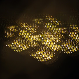 LED`s by Arno A Evers - Abstract Light Painting