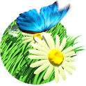 Daisy Field Live Wallpaper icon