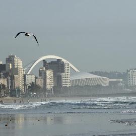 Durban mist by Maz Tissink - City,  Street & Park  Skylines ( Urban, City, Lifestyle )
