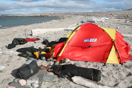 Image of the polar bear that was shot after attacking a Norwegian kayaker in his tent on Svalbard last week (click to enlarge) & Oceans News ExplorersWeb - Updated: Svalbard kayakers attacked by ...
