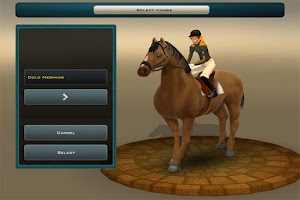 Screenshot of Race Horses Champions 2