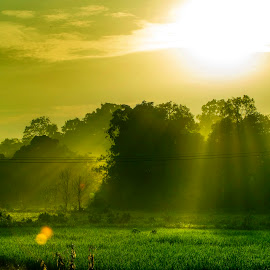 Sunrise at Merdang Garden, Samarahan, Sarawak by KY Pang - Landscapes Prairies, Meadows & Fields (  )