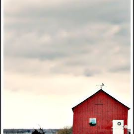 Little Red Barn by Donna Brown - Buildings & Architecture Homes ( small red barn home machinery tractor water lake ontario canada farming island amherst island ferry )