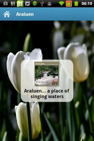 Araluen... singing waters