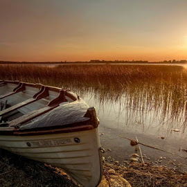 sunset  by Willie Forde - Transportation Boats ( sun sunset ireland westmeath lake boat )