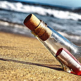 Message in a Bottle 4 by Richard Timothy Pyo - Artistic Objects Other Objects
