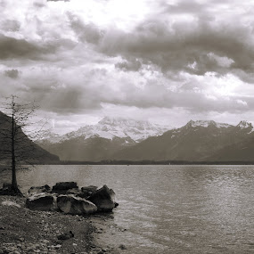 Geneva lake by Bogdan Penkovsky - Black & White Landscapes ( nature, bw, switzerland, lake, spring )