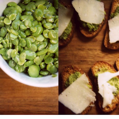 Fava Bean Crostini with Pecorino