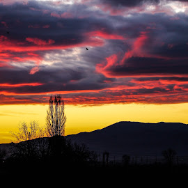 Before sunrise by Daniel Chobanov - Landscapes Cloud Formations ( plovdiv, over, fire clouds, rhodope mountain, sunrise, bulgaria )