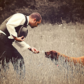 A Daisy for Molly by Ali Reagan - Animals - Dogs Portraits ( vintage, grass, daisy, dog, man )