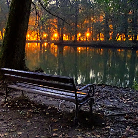 Quiet and peace by Tihomir Beller - City,  Street & Park  Night ( park, peace, night, quit )