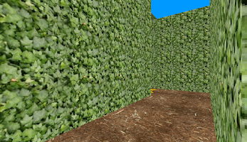 Screenshot of Maze Maker 3D