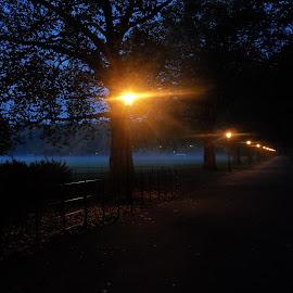 Battersea Park by Duncan Cunningham - City,  Street & Park  City Parks ( england, uk, london, park, city )