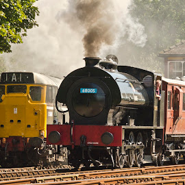 by Stephen Root - Transportation Trains
