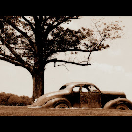 Old and Rusted by Angie Reed - Transportation Automobiles
