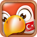 App Learn Turkish Phrases & Words APK for Windows Phone