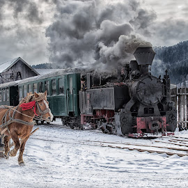 Snow Run by Pascal Hubert - Transportation Trains