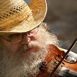 Fiddler by Taylor Mushinski - People Musicians & Entertainers ( music, fiddler, musician, fiddle, country, hat,  )