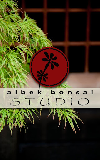 Albek Bonsai Studio
