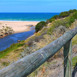 Fence Sitter by Leigh Martin - Landscapes Waterscapes ( trail fence beach water view )