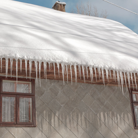 Icicles by Stanislav Horacek - Buildings & Architecture Homes