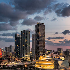 Miami Evening Lights by Darrell Champlin - City,  Street & Park  Skylines