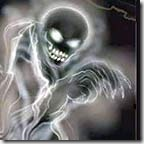 26149739_Skelet