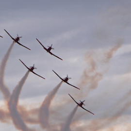 Brilliant Roulettes by Chrissy Almaraz - Transportation Airplanes