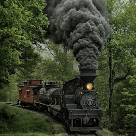 by Vicki Bowen - Transportation Trains