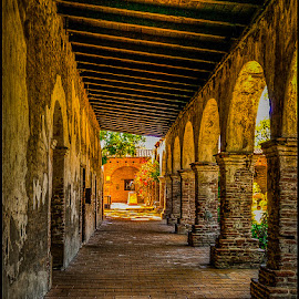 Capistrano Mission by Fred Coleman - Buildings & Architecture Public & Historical ( mission, california, west coast, san juan, capistrano )