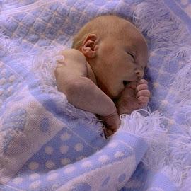Little prince by Patti Martin - Babies & Children Babies ( child, babiy, portrait, newborn )
