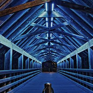 embossed bridge.JPG