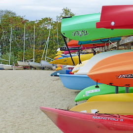 Boats galore by Michele Williams - Transportation Boats