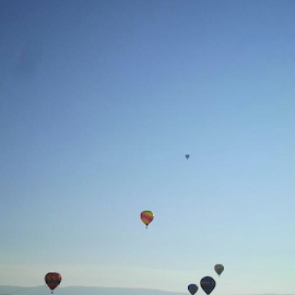Up, Up and Away by Verna Harris - Sports & Fitness Other Sports ( ute pass, rocky mountains, balloons, hot air balloons, air sports, early morning )