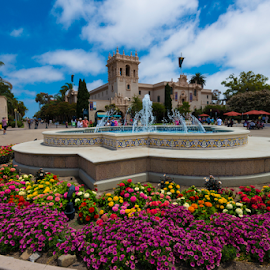 San Diego's Balboa Park by Alan Crosthwaite - City,  Street & Park  City Parks ( san diego, park, fountains, gardens, tourism, travel, flowers, balboa park, destination )