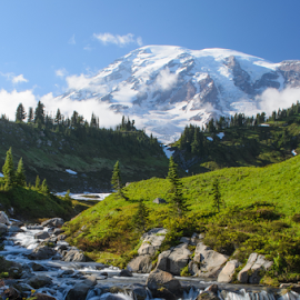 Edith Creek, Mt Rainier by Rich Vanderlip - Landscapes Mountains & Hills ( washington, stream, mountains, richardvanderlip.com, mountain, snow, view, scenic, beauty, landscape, alpine )