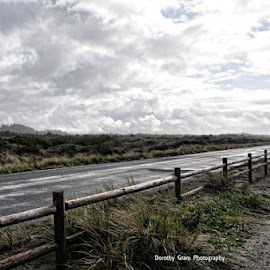 Stormy Weather Oregon Coast by Dorothy Valine Gram - Landscapes Cloud Formations ( clouds, after the rain, gray skies, roadside, storm )