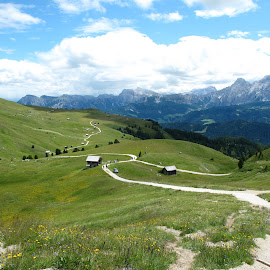 by Nicoletta Guyot Bourg - Landscapes Mountains & Hills ( path, nature, landscape )