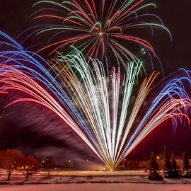 Firework by Joseph Law - News & Events World Events ( winter, alberta, bushes, snow, trees, sherwood park, fireworks, city park, lamp posts, competition )