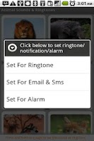 Screenshot of Animal Sounds & Ringtones