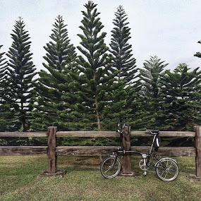 Heart bursting climb to Laman Saujana Hijau by Rozi Rahman - Instagram & Mobile iPhone ( cycling, brompton, bromptonmalaysia, iphonegraphy, iphonewonders, saujanahijau, putrajaya, amazingputrajaya )