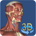 Download 3D Anatomy APK for Laptop